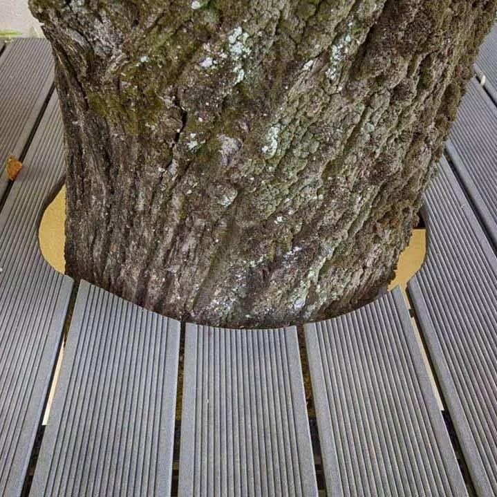 COOP aux BOIS : menuiserie reprise Froment • Surfaces terrasse composite finition sur-mesure
