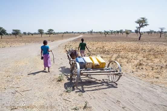 El Niño se ceba con las niñas de Etiopía dr alegria etiopia gambo