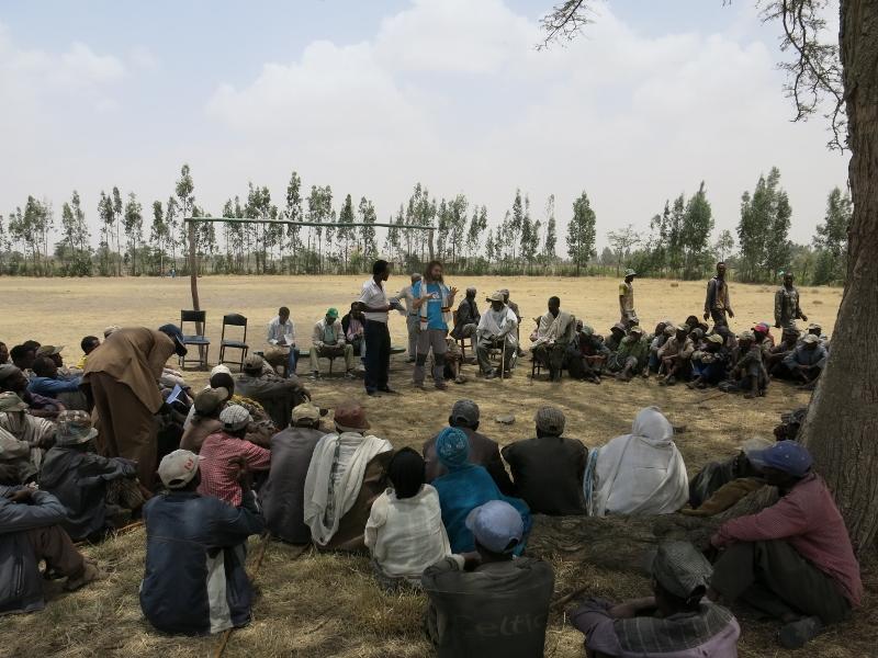 El club de las personas muertas: La mediocridad asesina africa