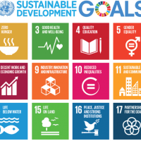 The 17 sustainable development goals (SDGs) to transform our world:
