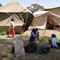 Más allá de Gambo: El brote de Sarampión podría superar los 3000 niños afectados