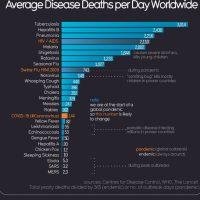 ¿Sabes cuál es el agente infeccioso más letal del mundo?