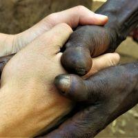 Que ser blanco no signifique nada — Cooperación con Alegría, el blog de Iñaki Alegría