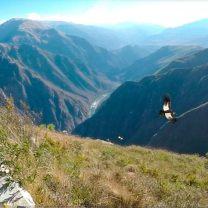 aventuras-mirador-del-condor-chonta-cusco-machu-picchu-andes-tours