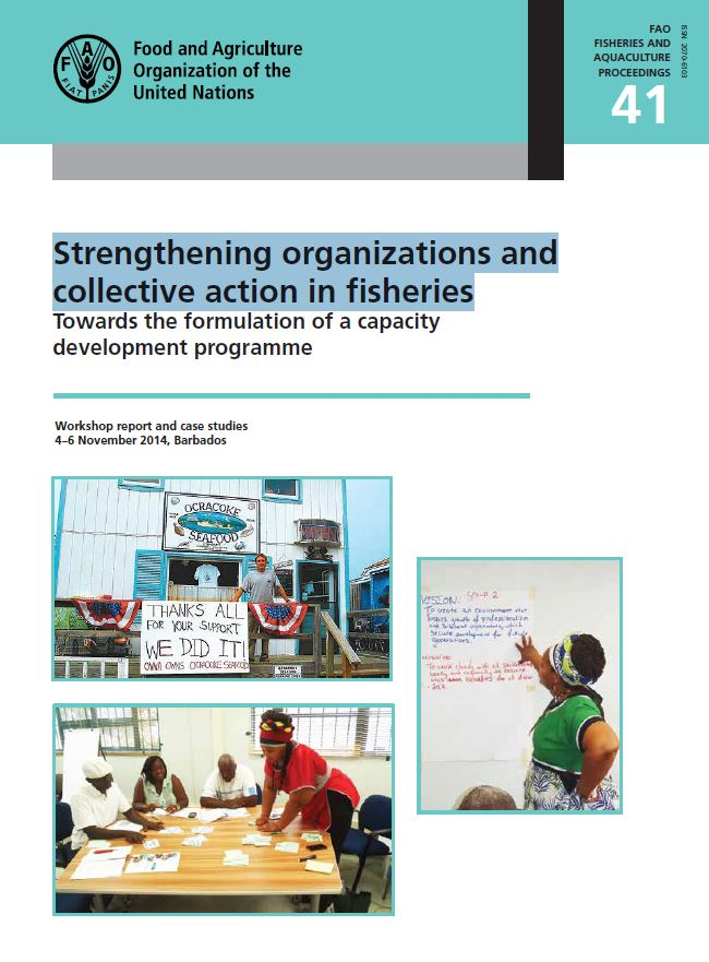 Strengthening organizations and collective action in fisheries