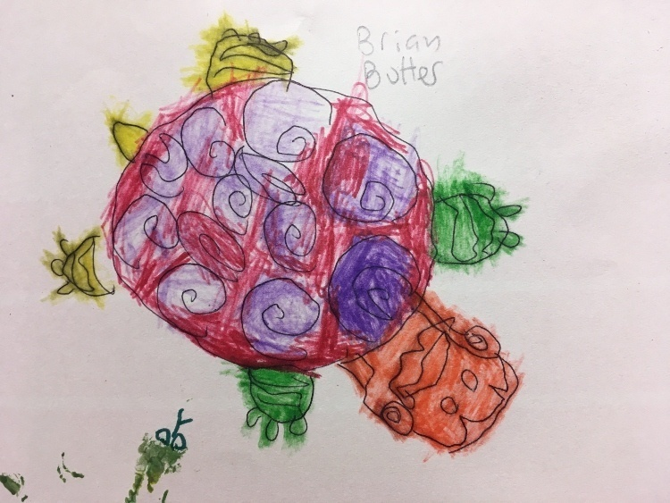a colourful artistic tortoise