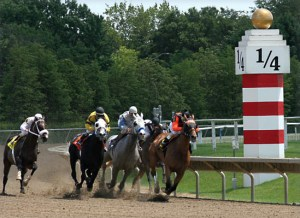 quarter-pole-horse