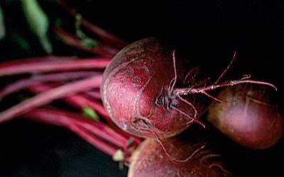 Bagte rødbeder med dansk gedeost