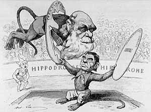 caricatura-darwin-5