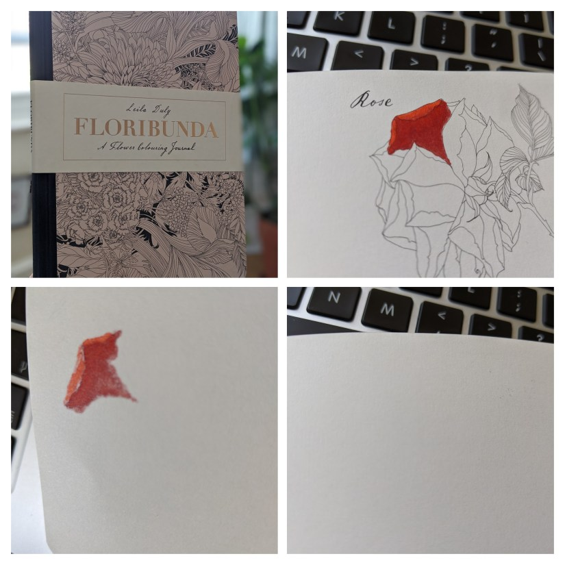 Showing Blending with Copics on the Floibunda coloring book.