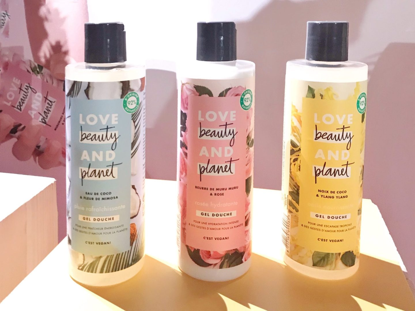 LOVE BEAUTY AND PLANET Presentation