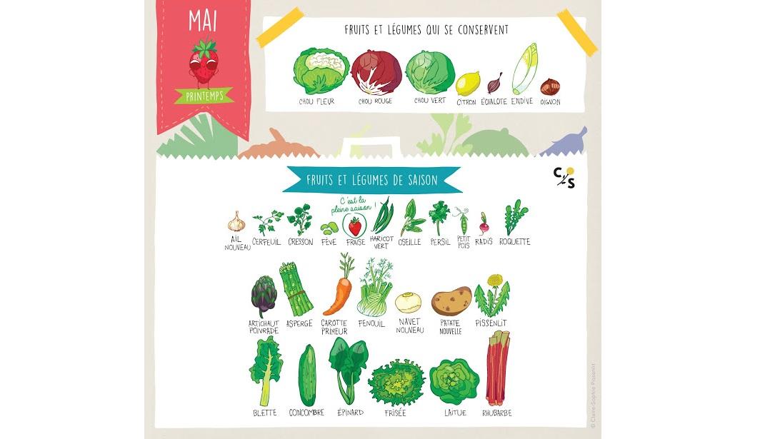 calendrier-fruits-legumes-mai-pissenlit-au-jardin
