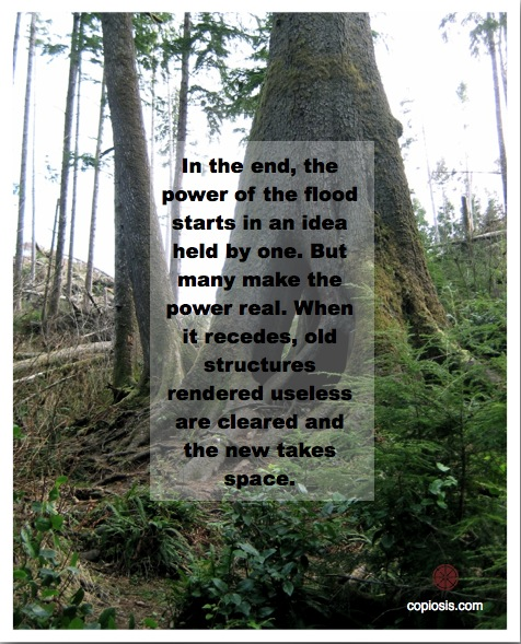 The power of the people, once galvanized around an idea whose time has come, is unstoppable.
