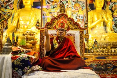 TKS-17 Adzom Gyalse Rinpoche on throne_