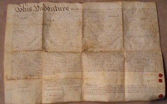 "This indenture measures 29"" x 19 1/2"" I've transcribed this side."