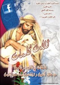 غلاف ثلاث كلمات - تأملات في الخادم و الخدمة 2012 - د.أنسي نجيب سوريال.jpg