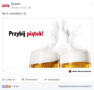 zywiec3