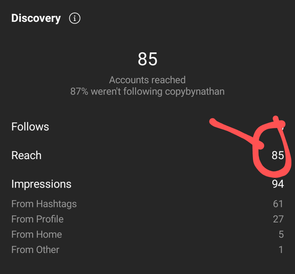 Instagram account showing insight for copybynathan