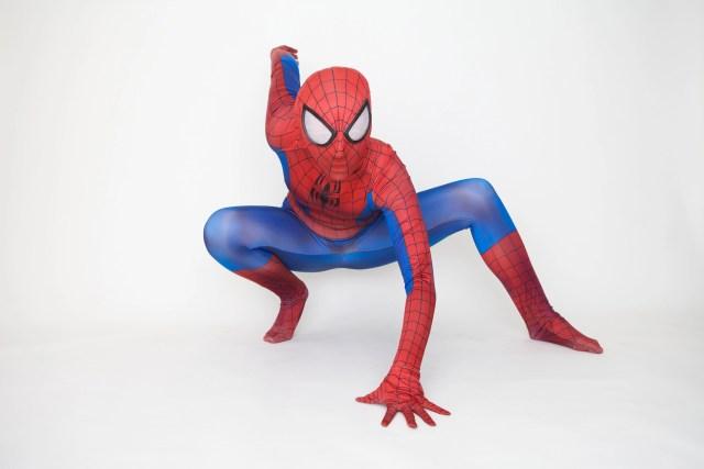 spider hero visits