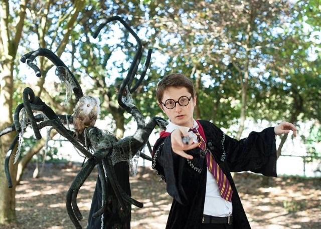 wizard show