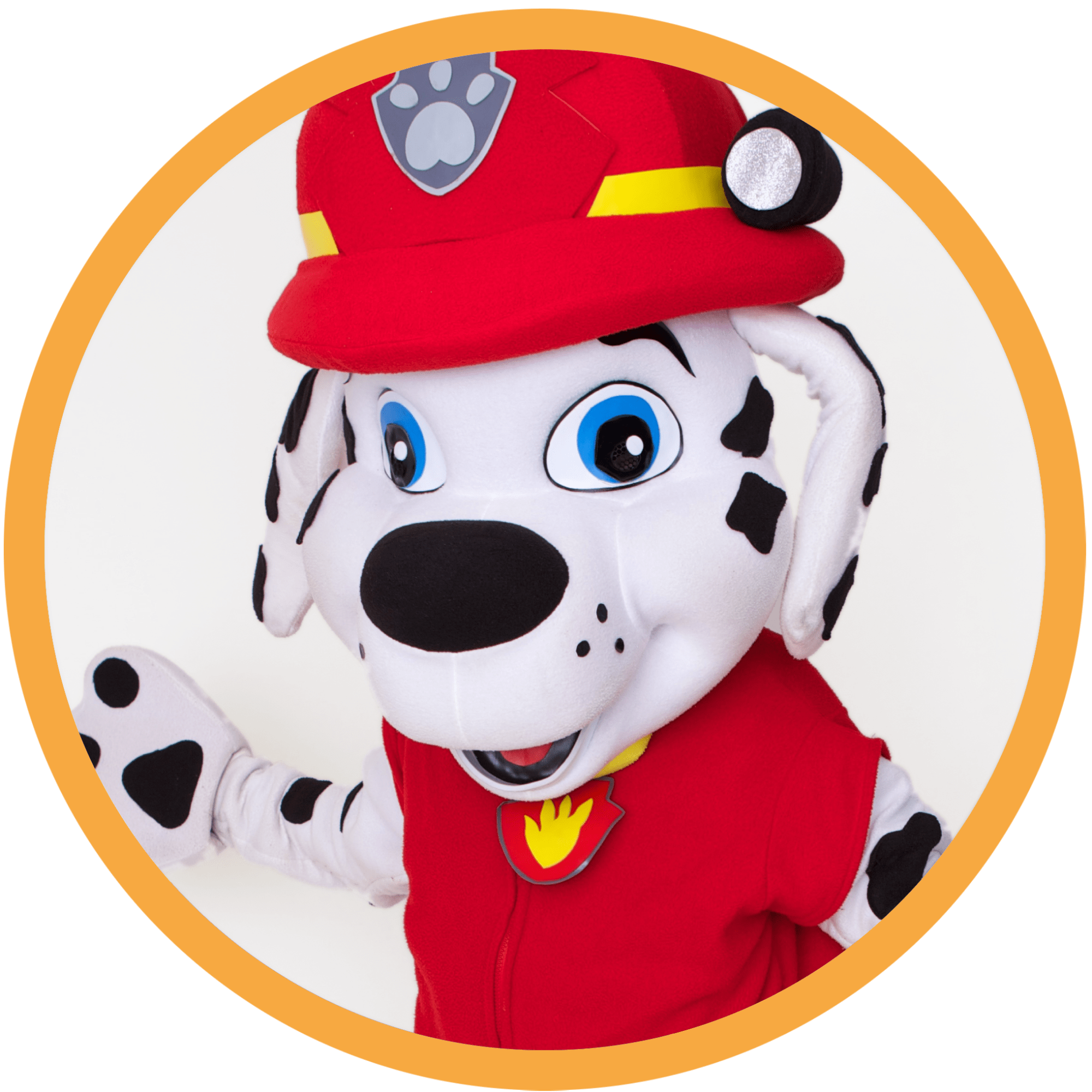 marshall pup, our characters