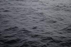 Header image for header content of Copymartin website – Photo by Jorge Gil on Unsplash