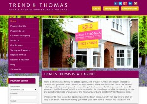 estate agent copywriting