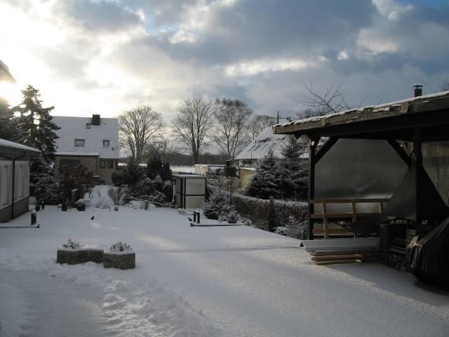 Back garden in the snow