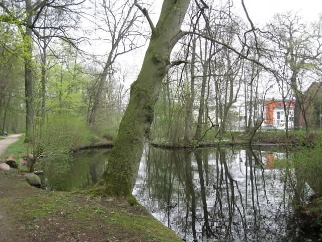 Wolfskuhle pond, Bremen