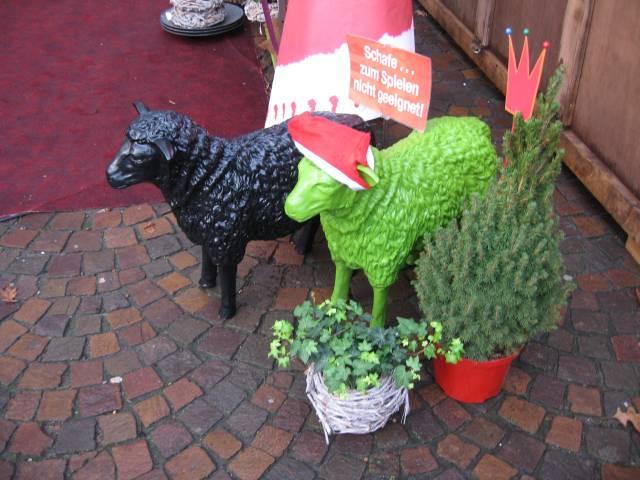 Vechta Christmas sheep
