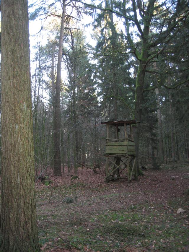 Hunter's seat