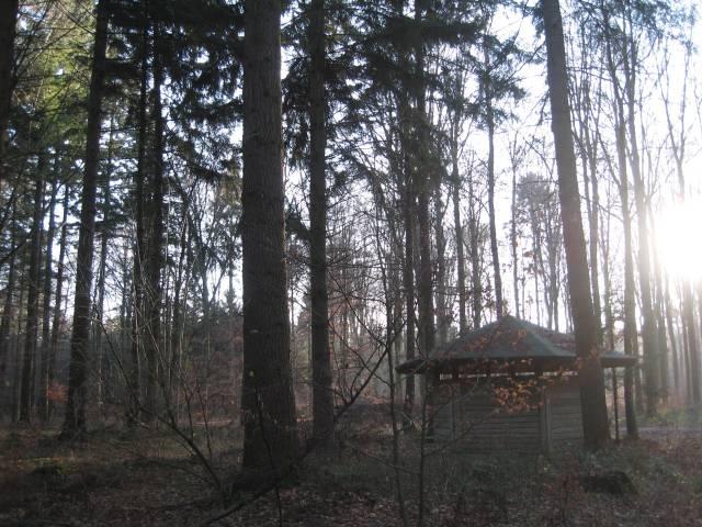 Woodlands hut