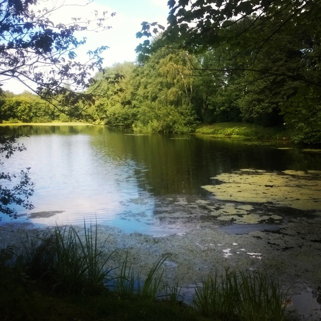 Lake Moordeich