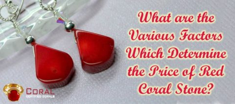 What are the various factors which determine the price of red coral stone?