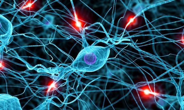 I benefici del canto corale sul cervello – Mauro Corsaro