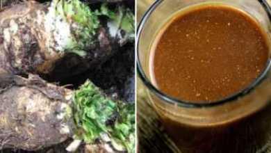 Photo of Перешла с утреннего кофе на цикорий… Вот какую пользу это принесло моему организму!
