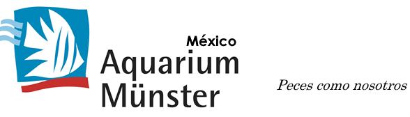 Logo AQM Mexico