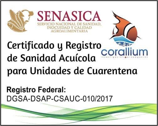 Certificado a SENASICA