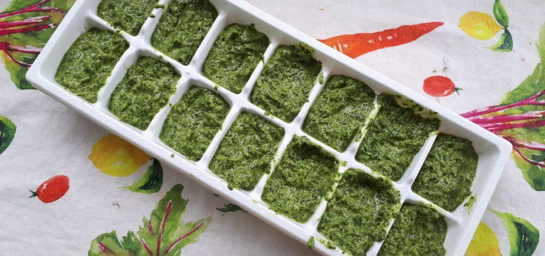 pesto aux fanes de carottes végane cora nutrition