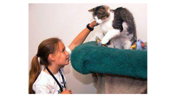Spaces Are Limited for the Humane Society of Broward County's PetPals Summer Camp