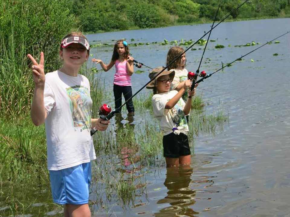 Sawgrass Nature Center Camp