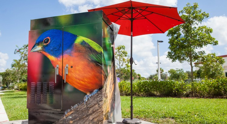 Dreary Traffic Boxes Become Canvases for Art Around Coral Springs