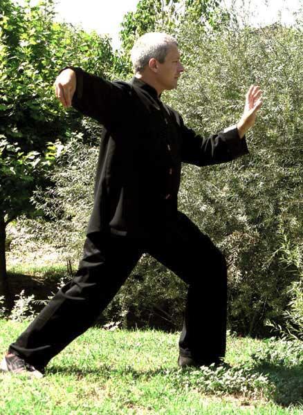 Taï Chi Forme 108 Yang : forme, Chuan, Style, Traditionnel, CorAmeTao, Pernes-les-Fontaines, Saint, Didier, Vaucluse