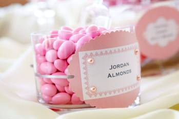 Love Sweet Love Candy Buffet and Favors Pink Jordan Almonds