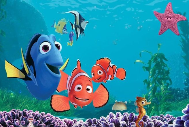 findingnemowallpaper800-12-things-every-finding-nemo-fan-needs-to-know-jpeg-235628