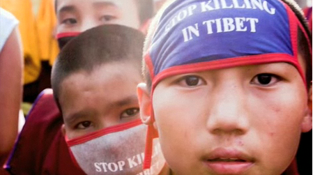 Candle for Tibet > Stop killing in Tibet