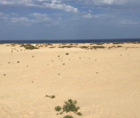 Le dune di Corralejo