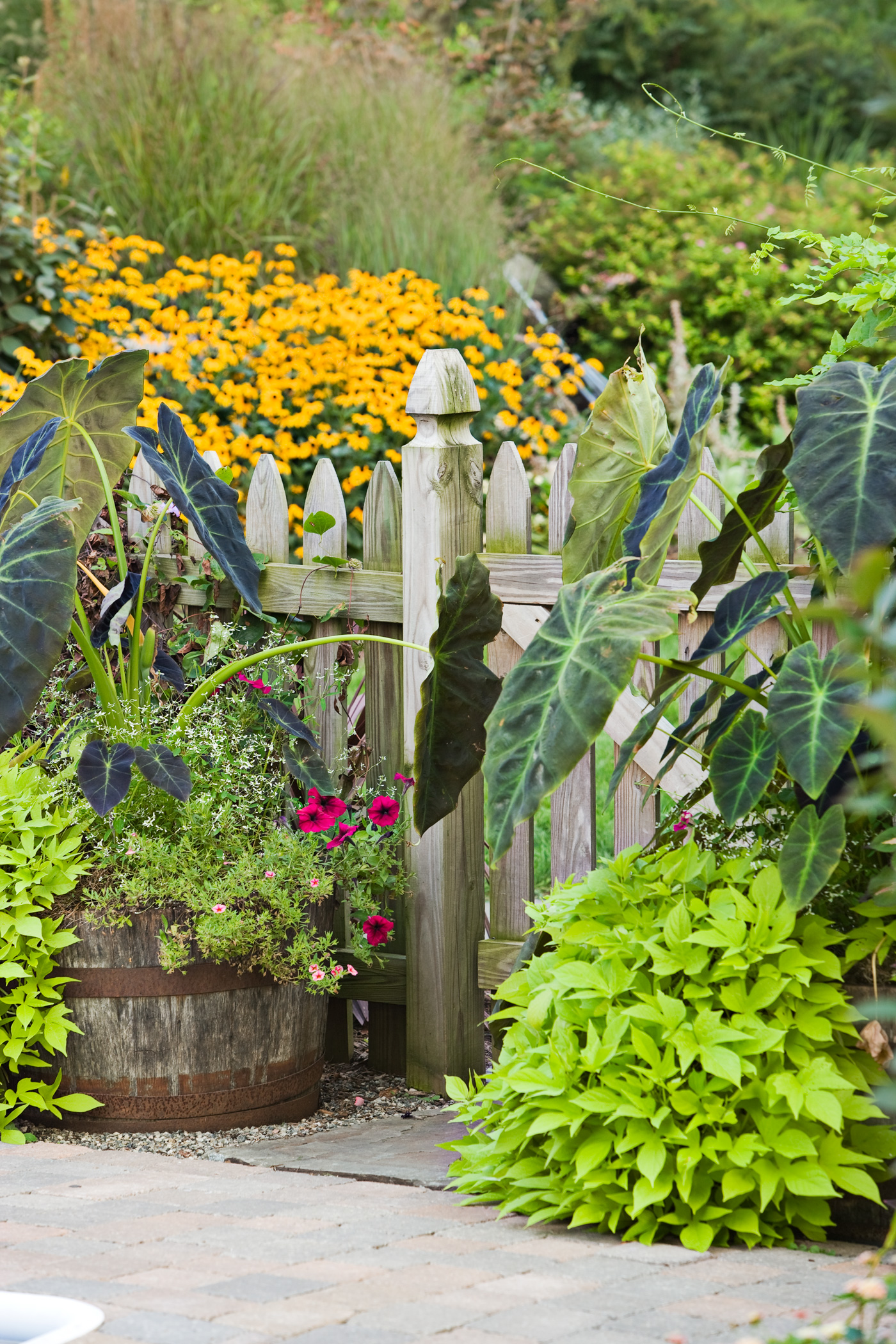 Garden Ideas Better Homes And Gardens container garden ideas better homes and gardens best garden ideas