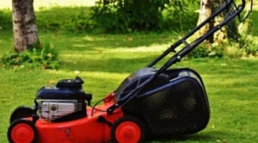 a picture of the best cordless lawn mower in use to trim grass