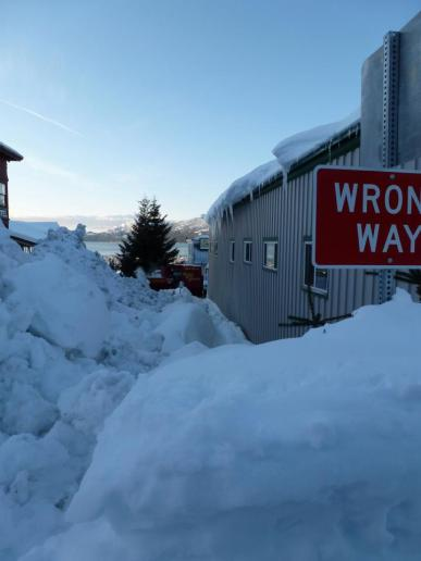 Def the wrong way! This whole street was used a s snow dump - Jan 9th